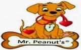 Mr Peanuts Premium Products